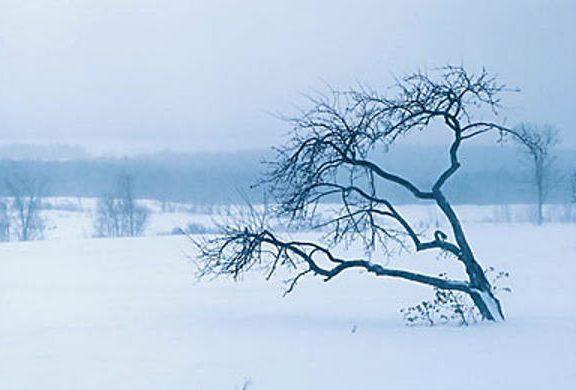 Zimske bolesti i tegobe - kako ih se riješiti